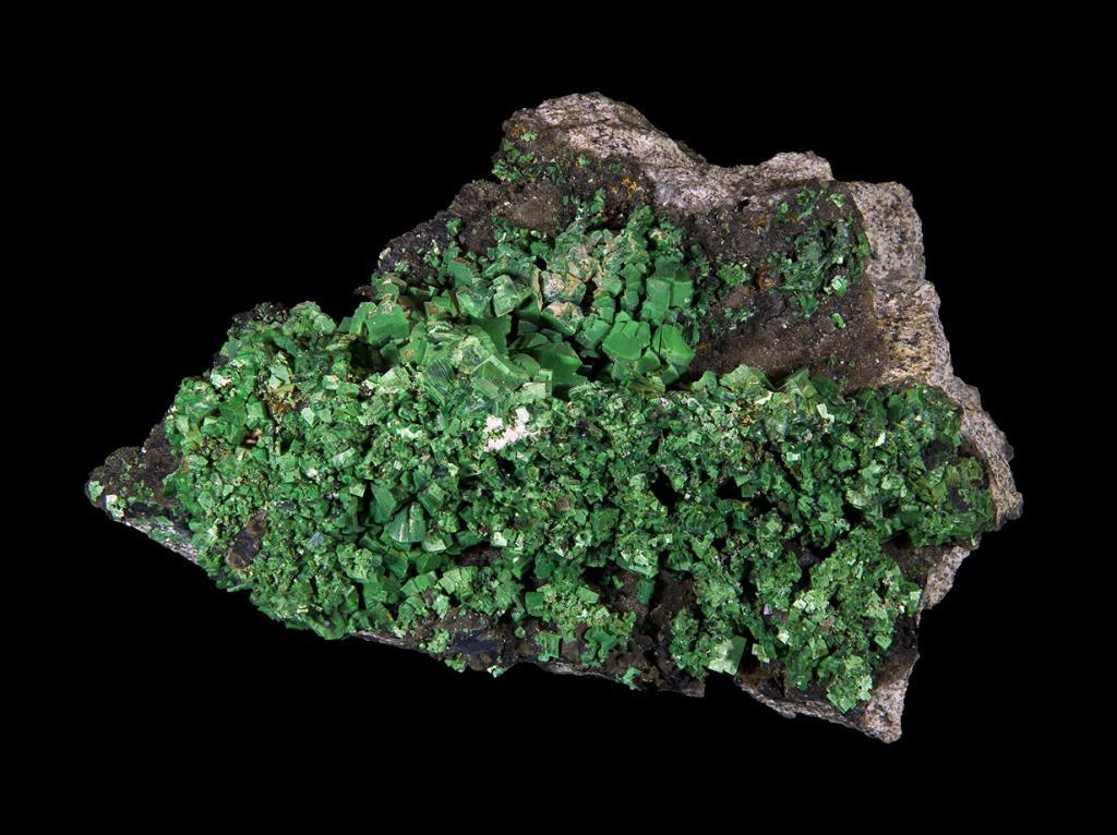 Торбернит. Представляет собой водный фосфат меди и уранила. Минерал ярко-зелёного цвета является радиоактивным из-за выделения радона. Месторождение: Австралия, Великобритания, Германия, Демократическая Республика Конго, Польша, Чехия, Франция и ЮАР. (Didier Descouens)