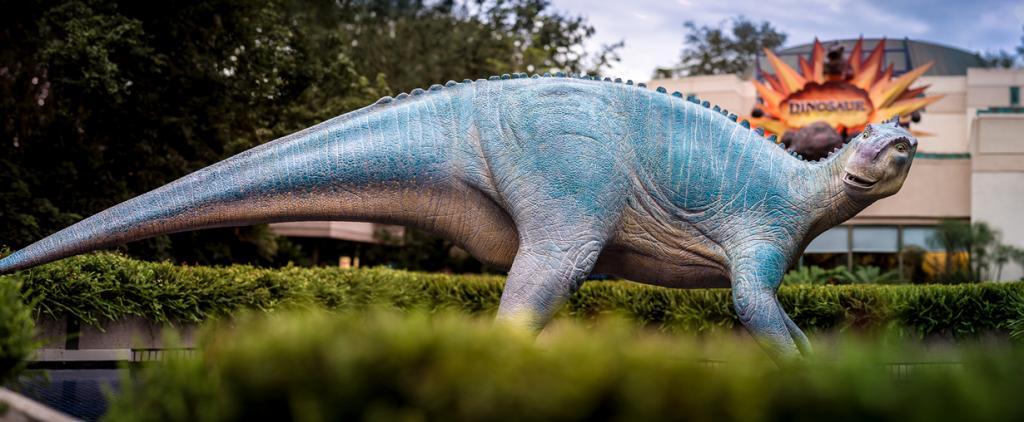 США. Флорида. «Королевство животных» Всемирного центра отдыха Уолта Диснея. (Scott Smith)