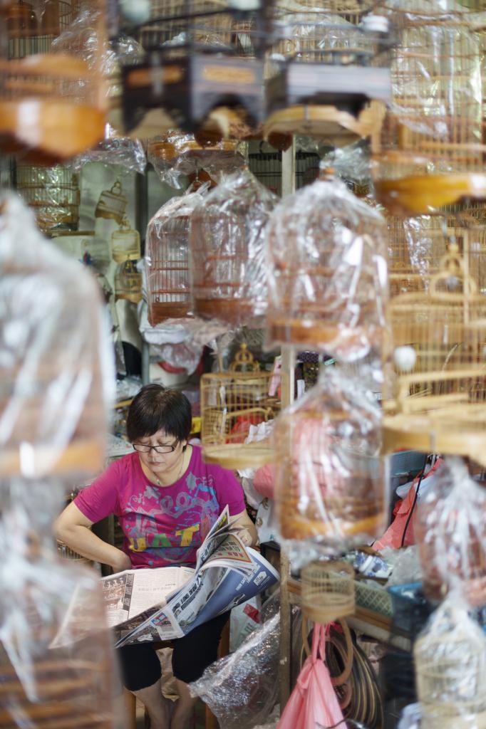 Китай. Гонконг. Птичий рынок на улице Юэнь По. (Andrés García)