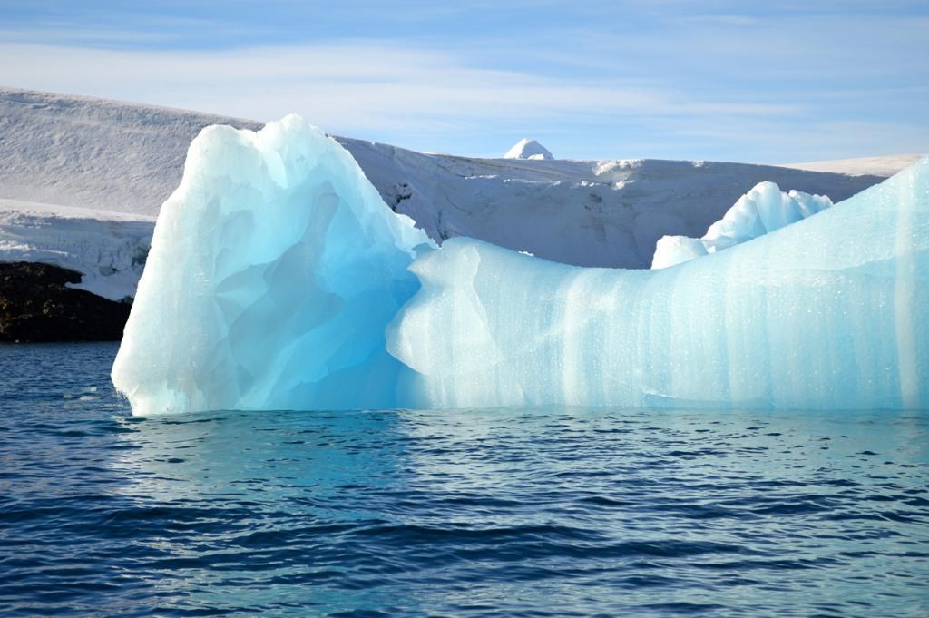 Антарктида. Айсберги. (Melissa Scott)