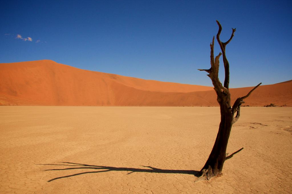 Плато Соссусфлей, пустыня Намиб. Мёртвая долина. (Matthew Beddow)