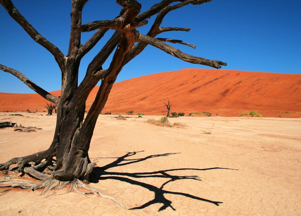 Плато Соссусфлей, пустыня Намиб. Мёртвая долина. (Santiago Medem)