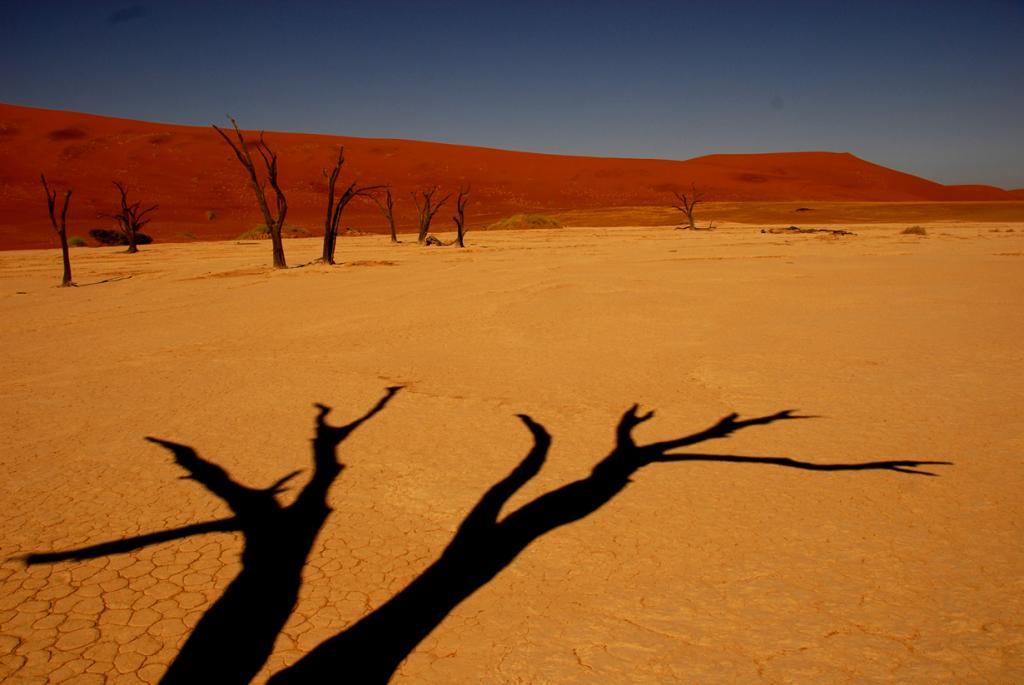 Плато Соссусфлей, пустыня Намиб. Мёртвая долина. (Travis Lupick)