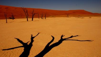 Сюрреализм Мёртвой долины (12 фото)