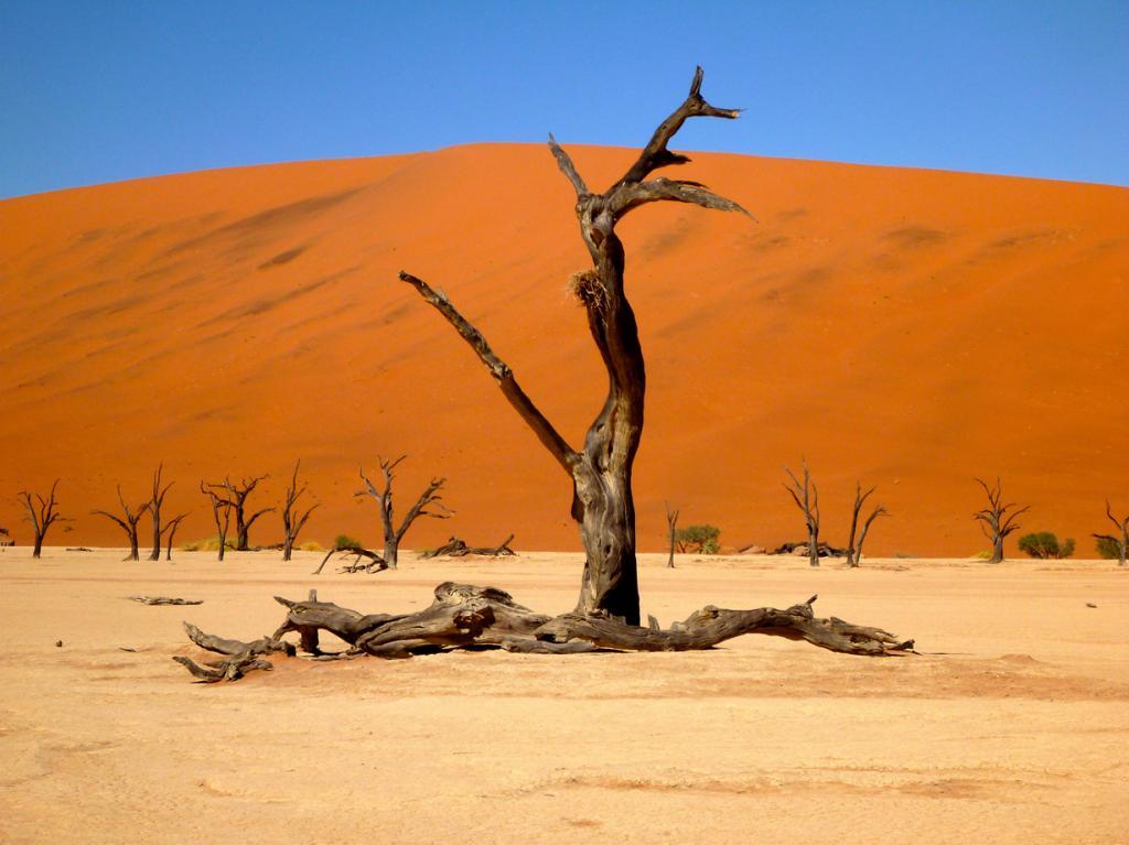 Плато Соссусфлей, пустыня Намиб. Мёртвая долина. (Rick McCharles)
