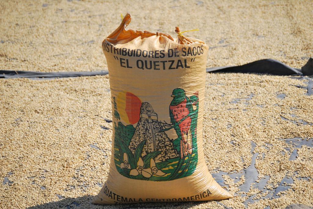 8 место. Гватемала. 240 000 000 кг в год. (Zhu)