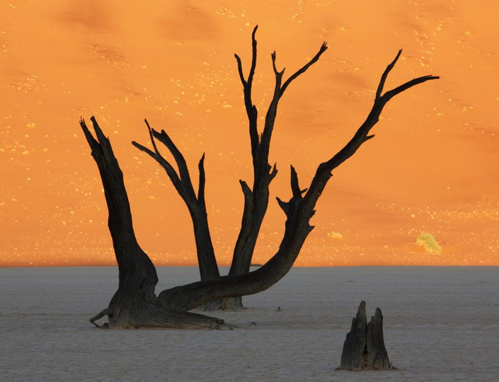 Плато Соссусфлей, пустыня Намиб. Мёртвая долина. (Vernon Swanepoel)