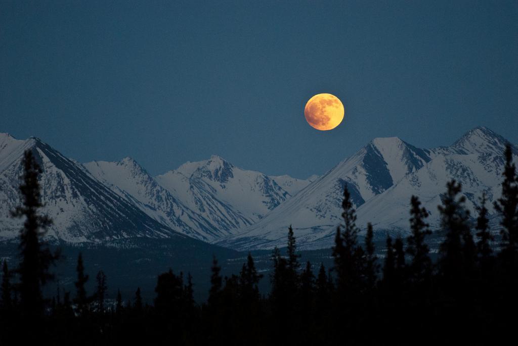 Лунное затмение. (Denali National Park and Preserve)