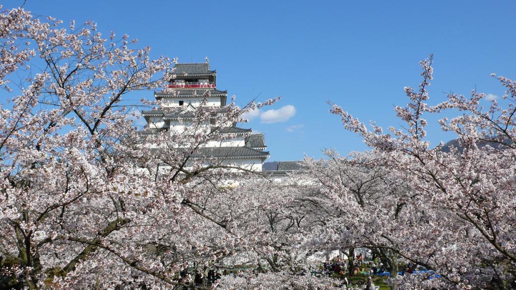 Замок Аидзувакамацу. (yisris)