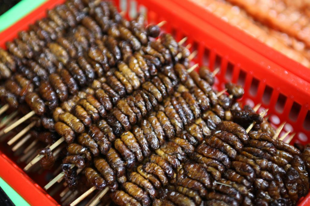 2 место. Обжаренные во фритюре личинки шелкопряда. Подаётся «лакомство» в основном в виде шашлычков. Популярно в странах Азии. (sj liew)