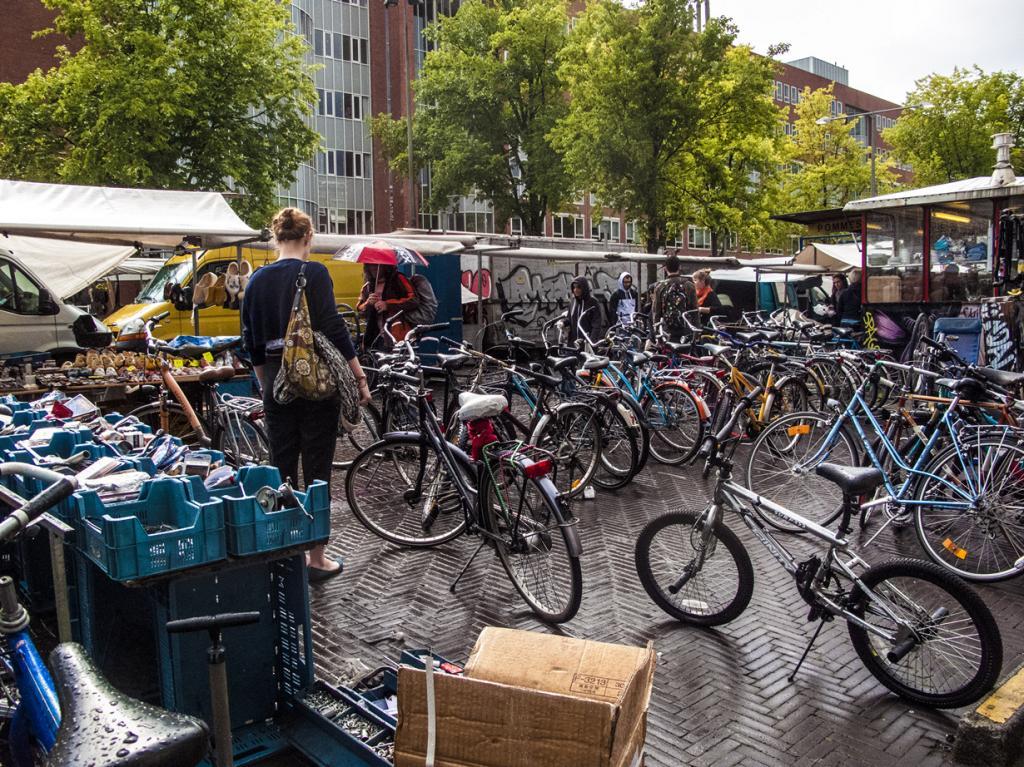 Нидерланды. Амстердам. (Ksenia Novikova)