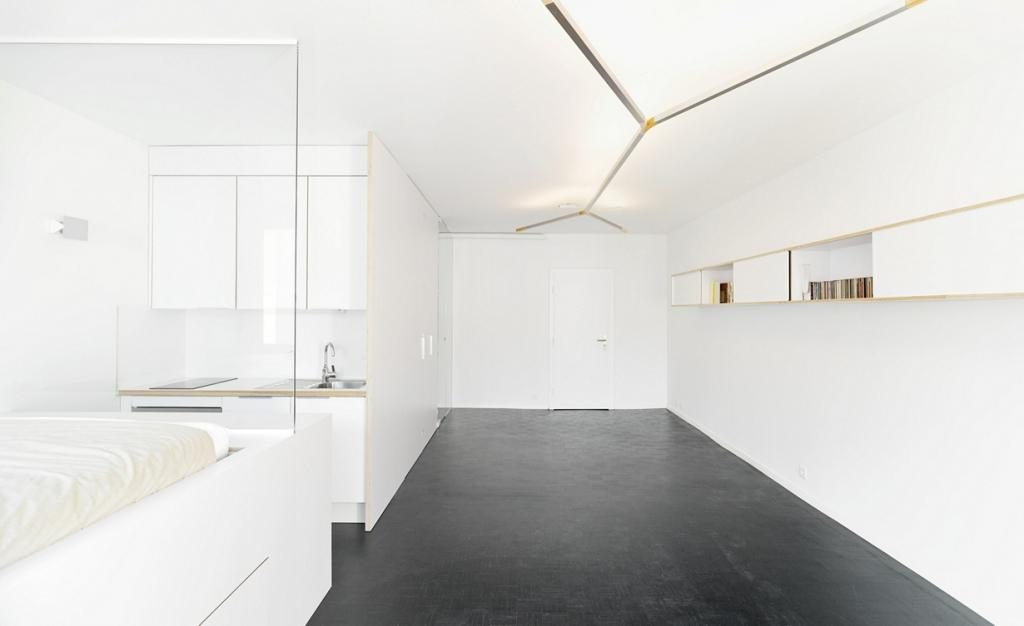 Швейцария. Женева. Частная квартира, спроектированная FREAKS freearchitects. (David Foessel)