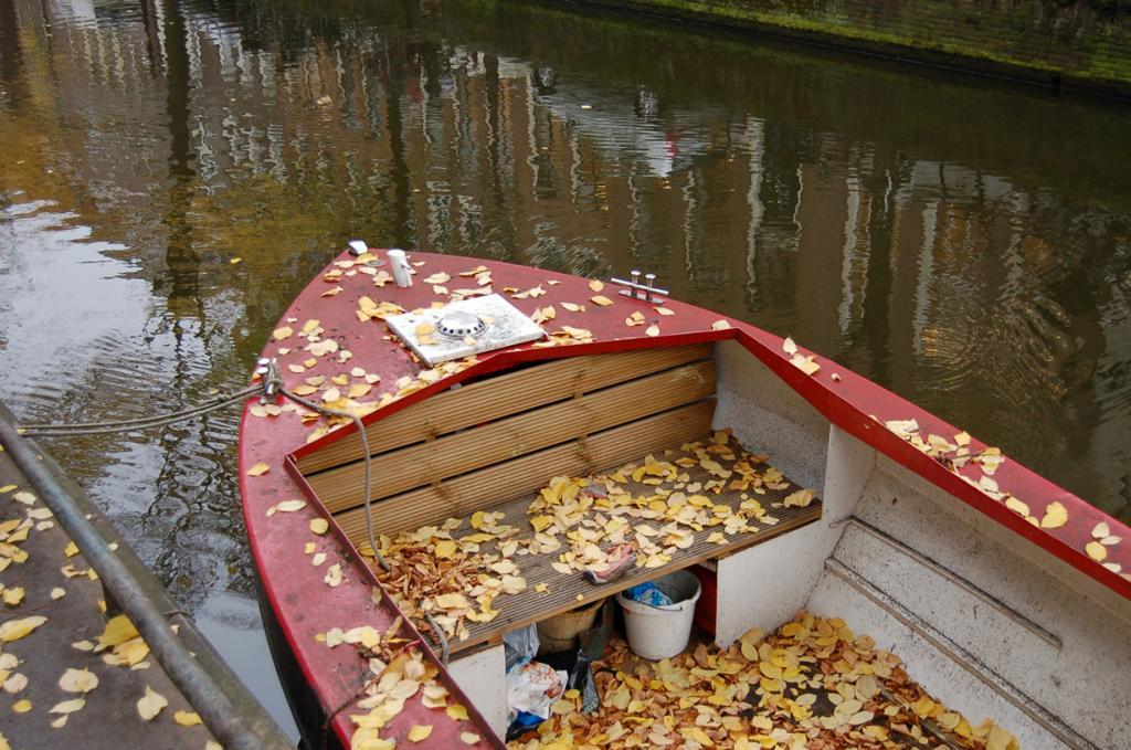 Нидерланды. Амстердам. (thinkpublic)
