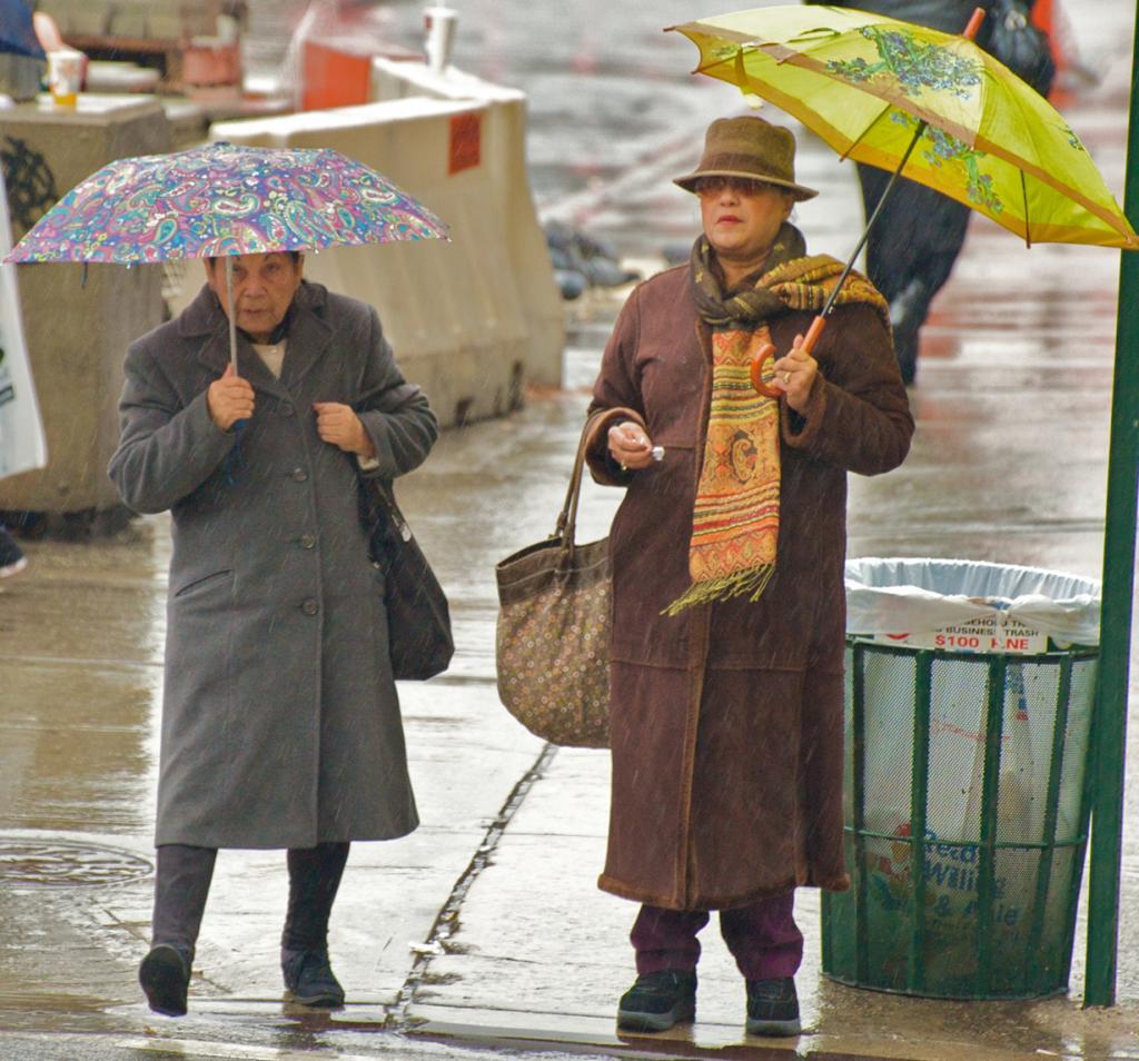 Под зонтом. (Ed Yourdon)
