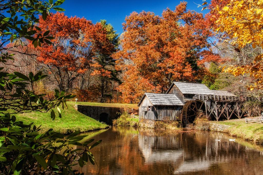 Осень. (Matthew Paulson)