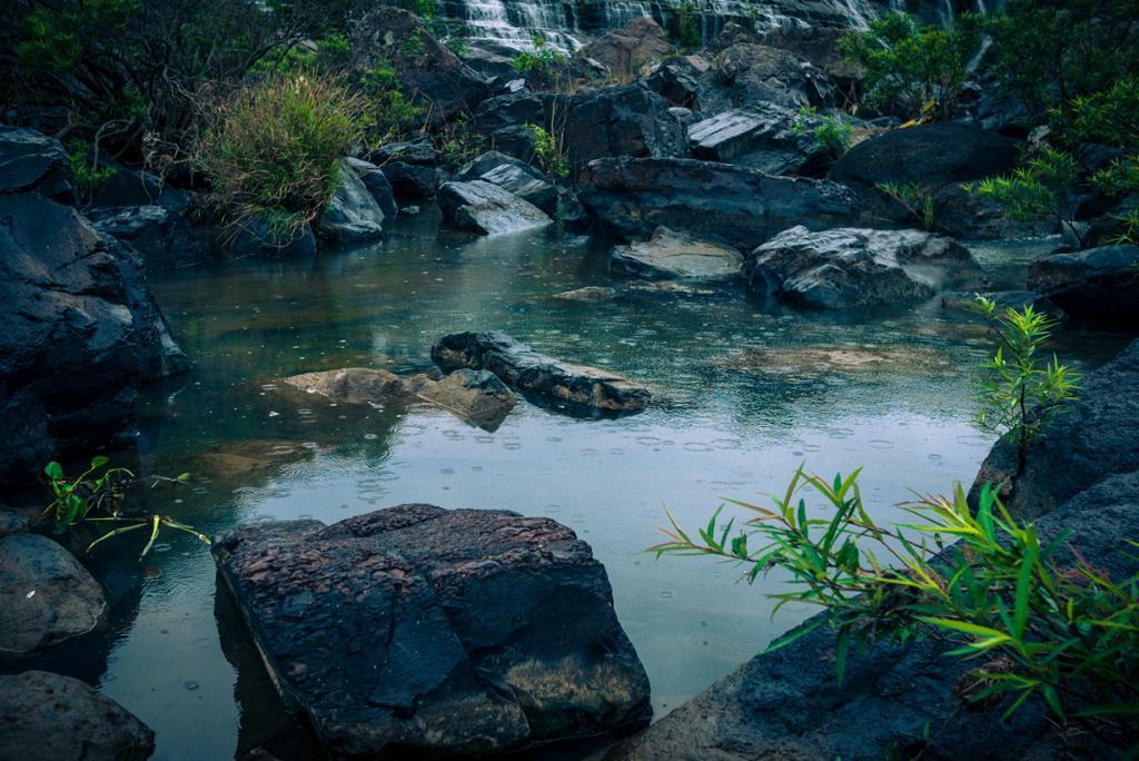 Вьетнам. Далат, Ламдонг. Путешествие к водопаду Понгуа. (Lar)