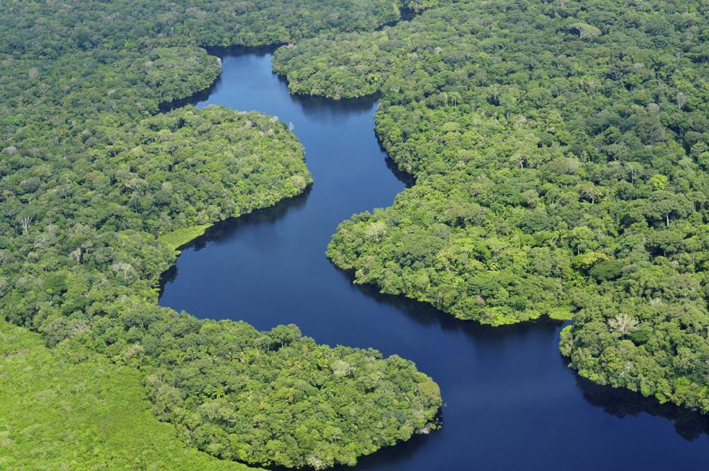Дождевые леса Амазонии. (CIAT)