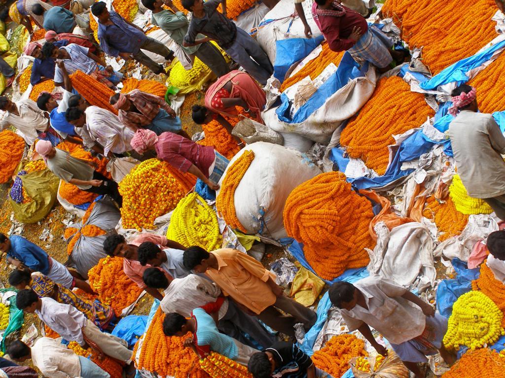 Индия. Калькутта, Западная Бенгалия. Повседневная жизнь. (@rno)