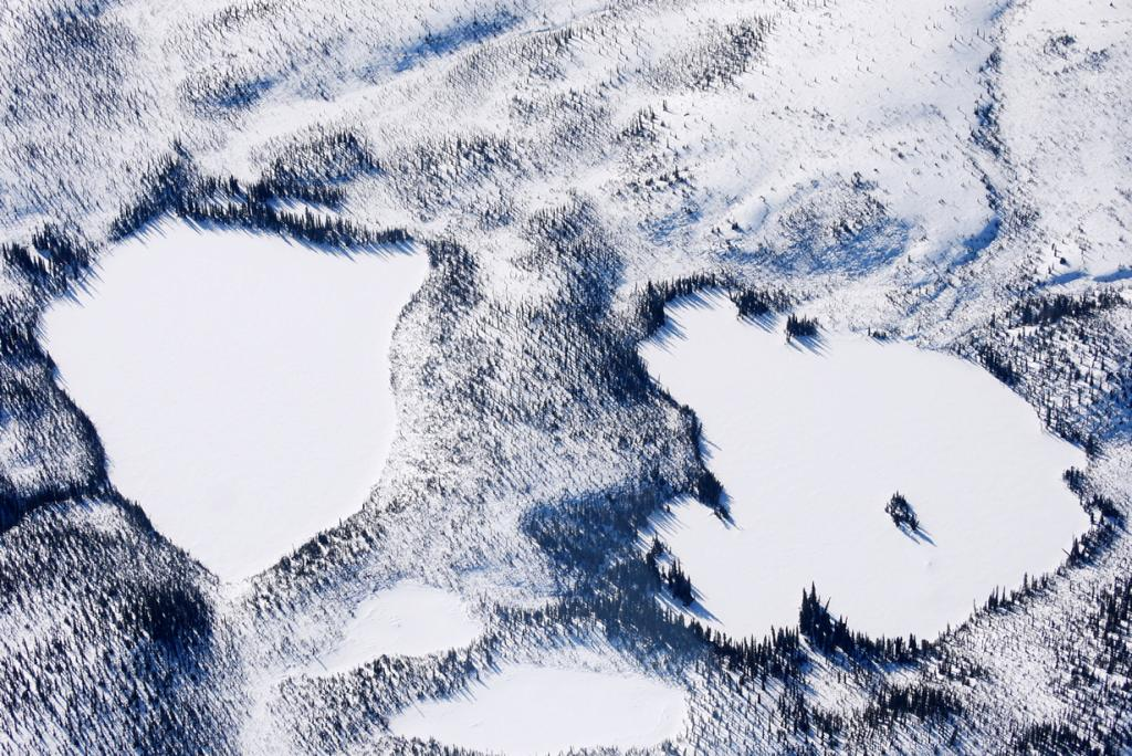 США. Аляска. Прогулка по Национальному парку Денали. (Denali National Park and Preserve)