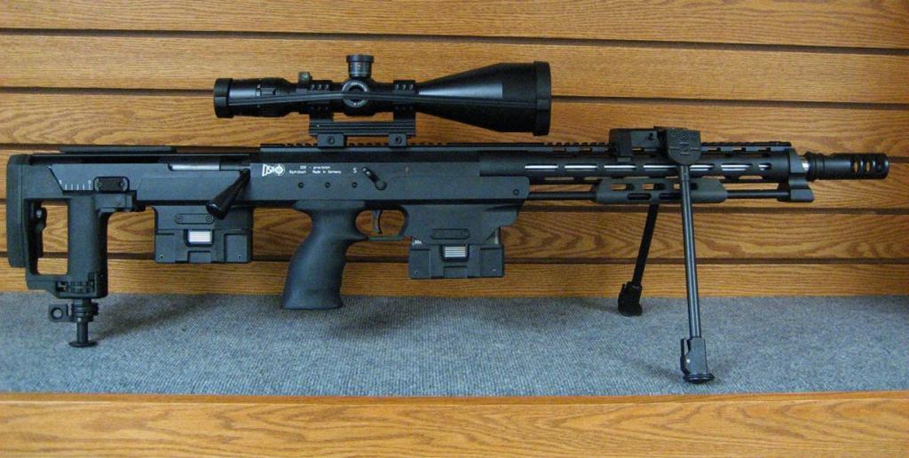 6 место. Снайперская винтовка DSR-1. Разработана в Германии. (Koalorka)