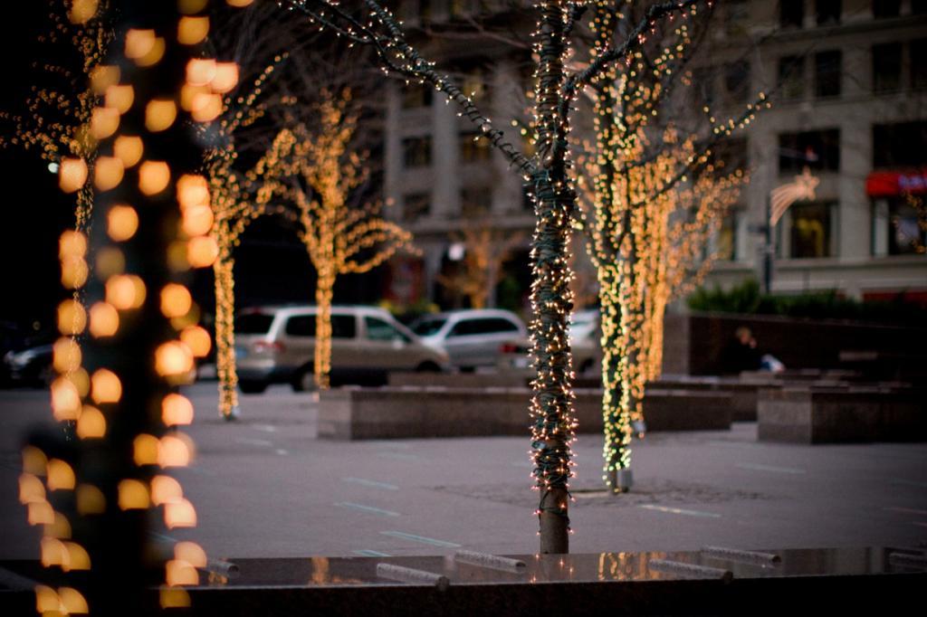 США. Нью-Йорк. (John Davey)