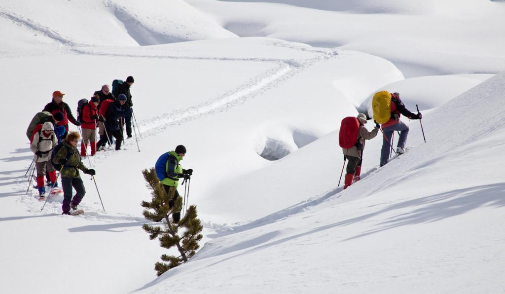 Прогулка в снегоступах. (alh1)