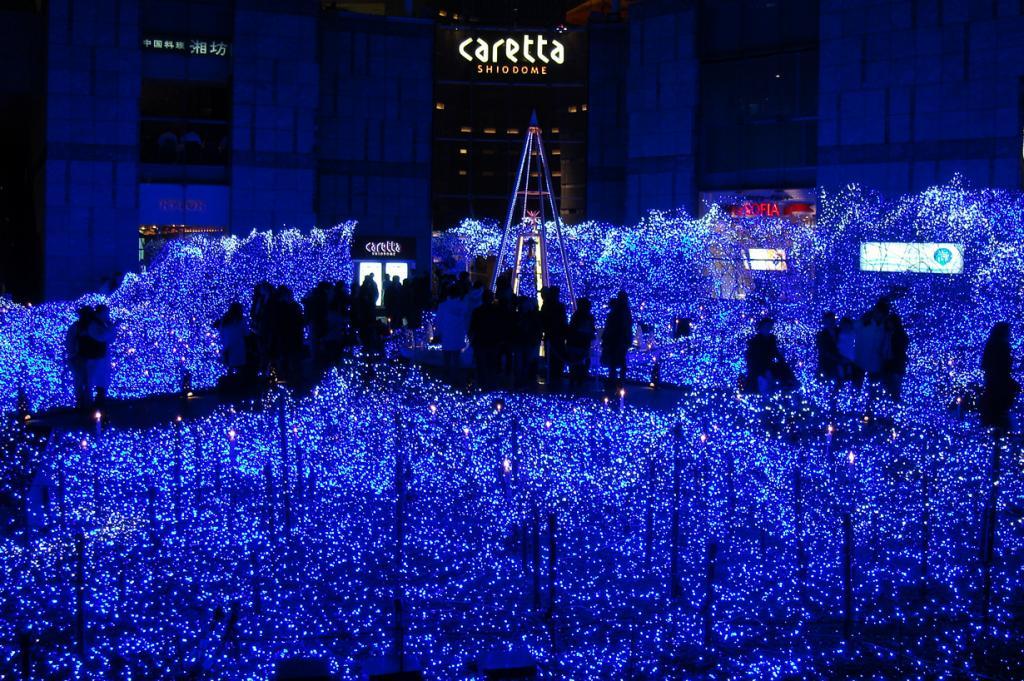 Япония. Токио. (Marufish)