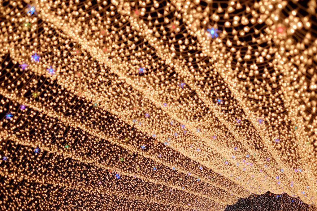 Япония. Кувана. Во время фестиваля света. (かがみ~)