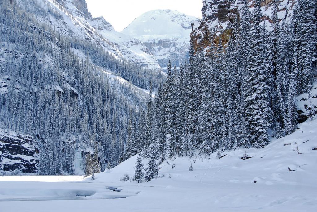 Канада. Альберта. Национальный парк Банф. (Adam Fagen)