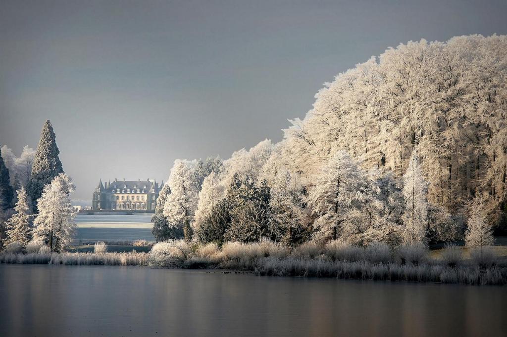 Мороз. (photophilde)