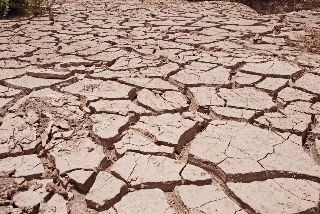 Чили. Пустыня Атакама. (Gerben van Heijningen)