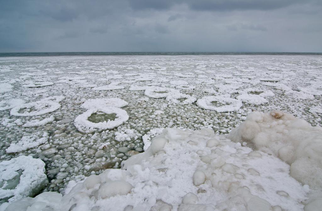 В оковах льда. (Tom Gill)