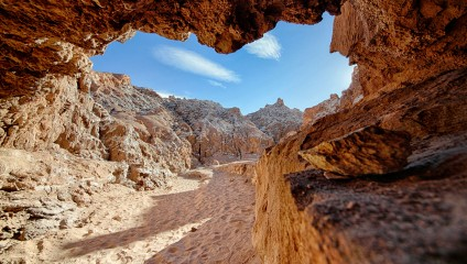Самая сухая пустыня Земли