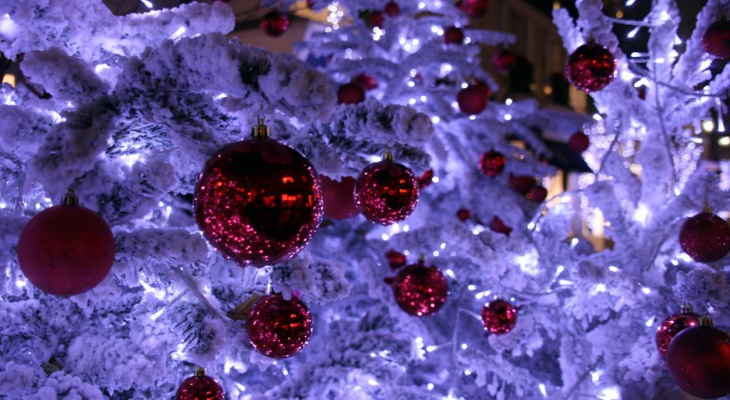 Франция. Париж. Рождественское время. (Curious Magpie Photography)