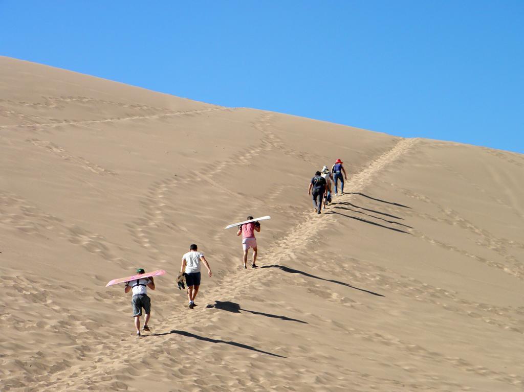 Чили. Пустыня Атакама. (Luis Alveart)