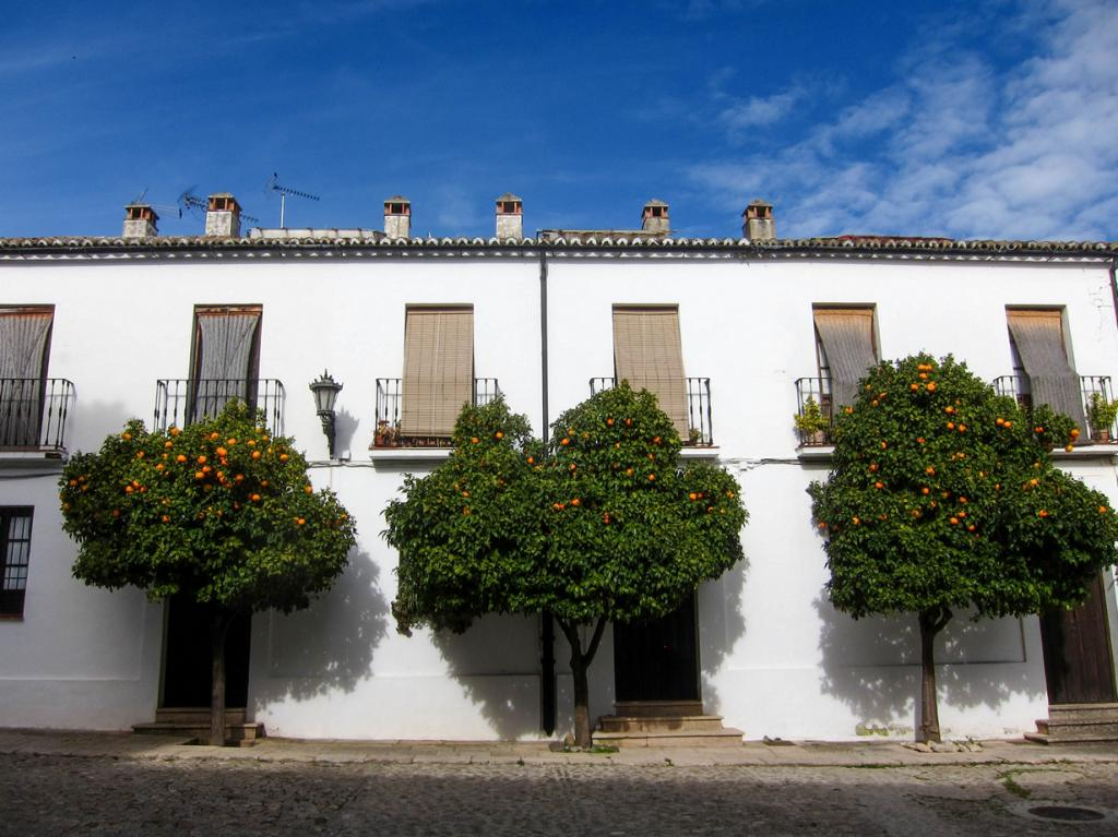 Испания. Ронда, Андалусия. (Kristin Resurreccion)