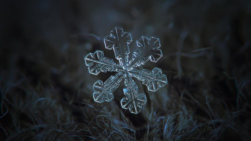 Снежинки. (Alexey Kljatov)