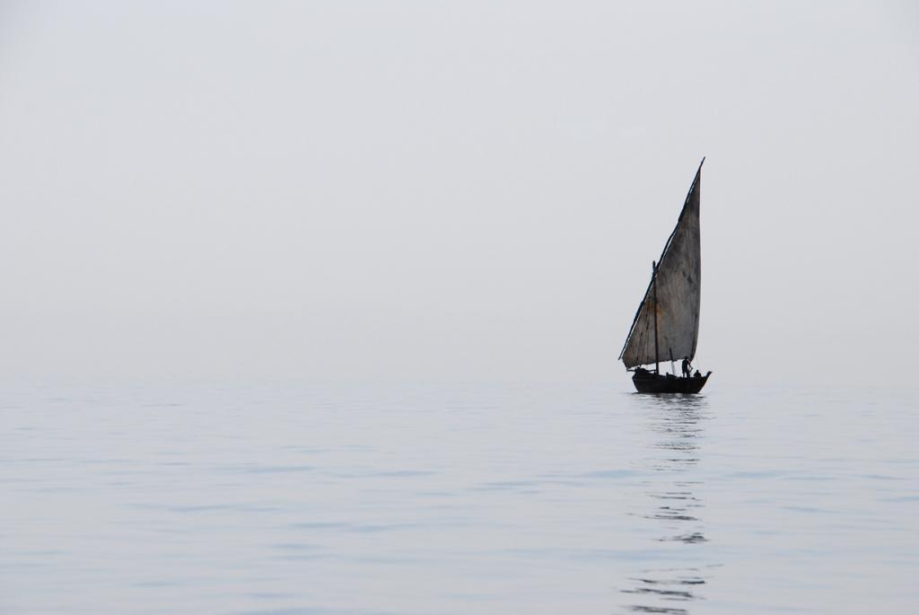 Во время рыбалки. (Jelen_Photos)