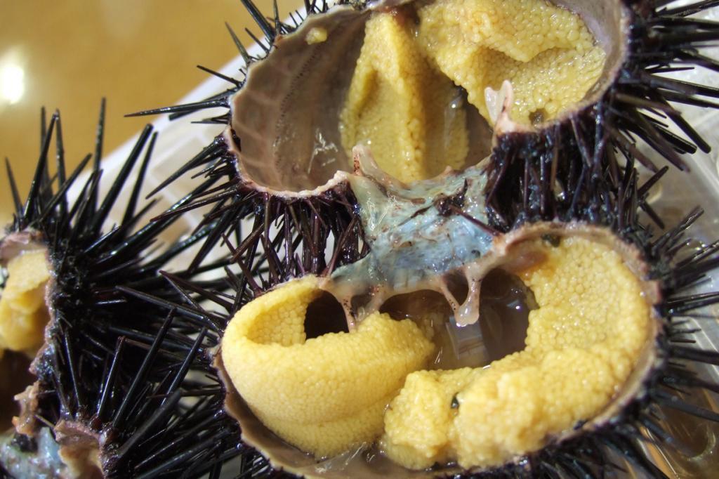Морской ёж. Животных употребляют в средиземноморских странах, в Северной и Южной Америке, а также в Японии и Новой Зеландии. Перед употреблением морского ежа просто разрезают пополам и съедают его внутренности ложкой. (tokyofoodcast)