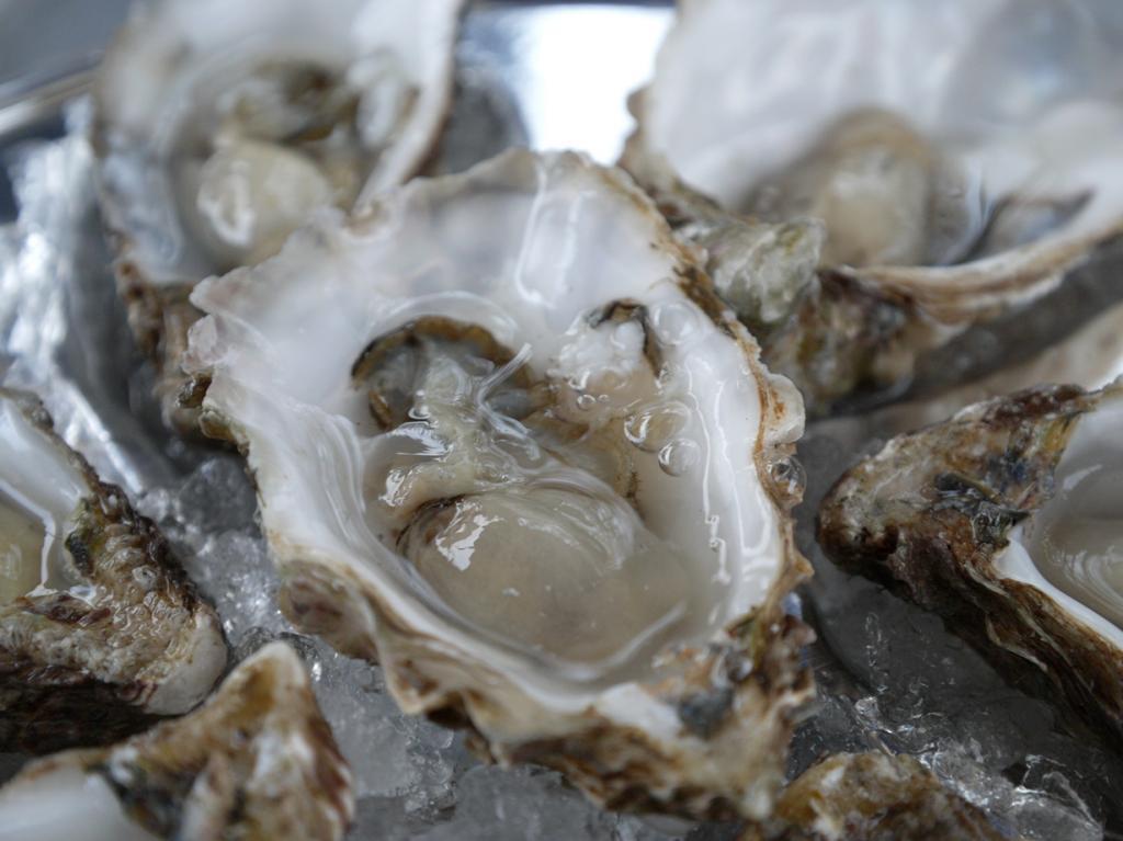 Устрицы. Известный во всём мире деликатес. Моллюски, спрыснутые лимонным соком, употребляются живыми. (Farrukh)