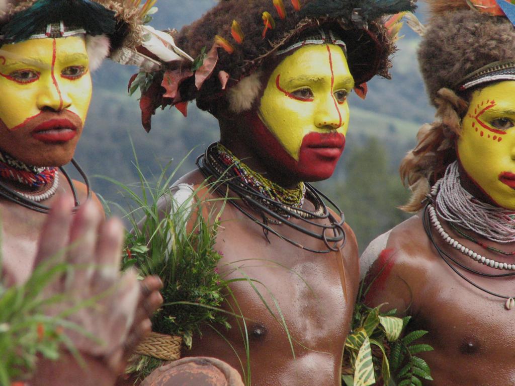 Хули. Проживают на территории Индонезии и Папуа — Новой Гвинеи. Численность не превышает 150 тыс. человек. (Drew Douglas)