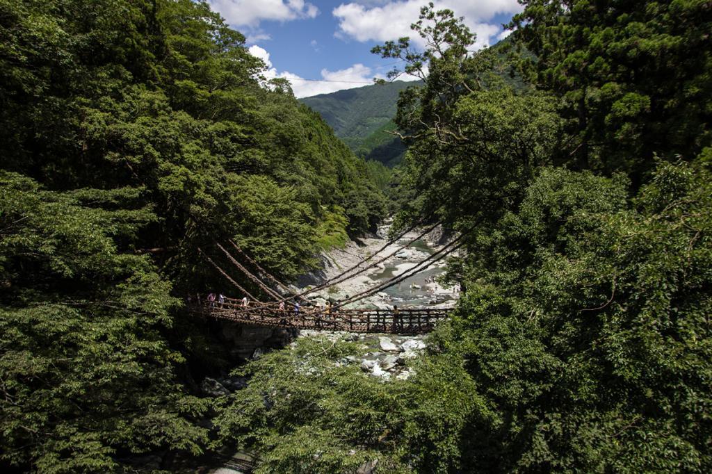 Япония. Сикоку. Плетёный мост в долине Ия. (Christian Kaden)