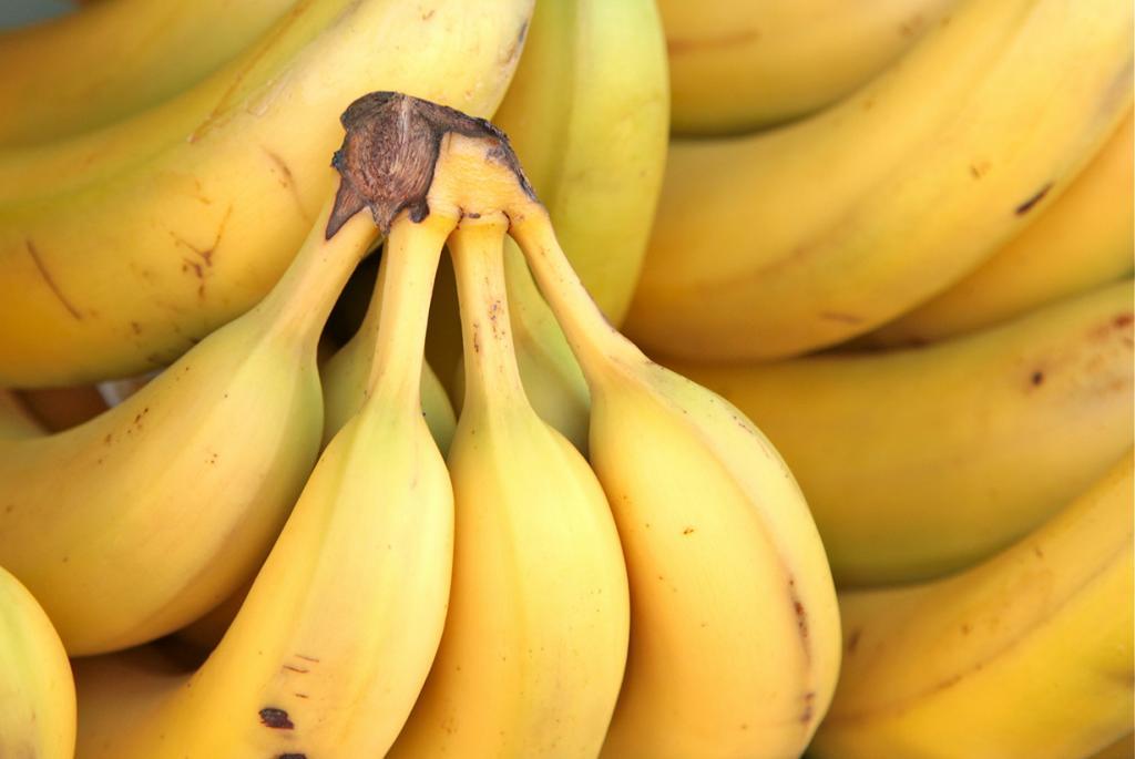 Специалист по дозреванию бананов. Газация бананов — довольно шокирующий факт. Сложно представить, что перед тем как попасть на полки магазинов, фрукт проходит через «газовую камеру». Все дело в том, что бананы экспортируются ещё зелёными в целях предотвращения их порчи. Впоследствии они проходят процесс газации в специальных теплоизолированных камерах, чтобы ускорить дозревание. Специалисты, выполняющие эту работу, как правило, — высококвалифицированные учёные или инженеры. (torbakhopper)
