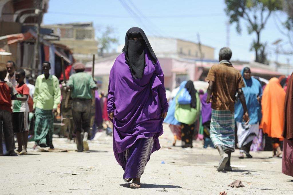 Сомали. Попасть в страну возможно, однако находиться в ней — достаточно рискованно. Для обеспечения базовой безопасности туристам необходимо нанимать в сопровождение проводника или ещё лучше — вооружённую охрану. (United Nations Photo)