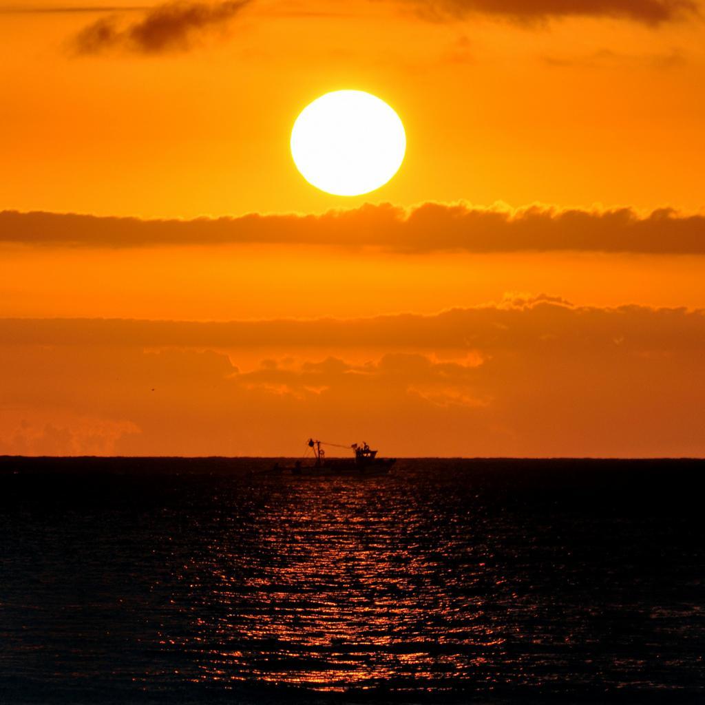 Считается, что Солнце за время своего существования облетело вокруг центра Млечного Пути 20 раз, совершив только 1/250 одного вращения с момента появления человека. (OMAR-DZ)