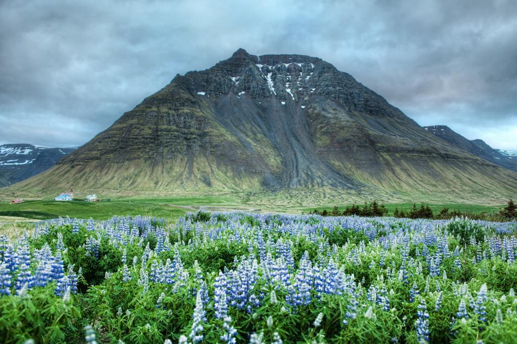 Несмотря на фотографии горных вершин Исландии, которые вы могли видеть, в стране на самом деле нет ни одной полноценной горы. Если посмотреть внимательно на фотографии, можно заметить, что практически все горы и холмы имеют плоскую вершину, потому что они, как и их долины, появились благодаря ледникам. Исландия была буквально «вырезана» ледниками, которые сформировали глубокие долины и высокие горные хребты. Страна также является домом для множества вулканов, которые неосведомленный наблюдатель может перепутать с горами. (Trey Ratcliff)
