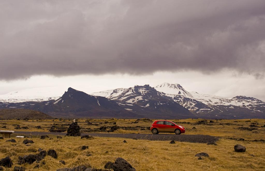 В Исландии практически нет деревьев. Здесь растут лишь немногие виды. Многие из деревьев были вырублены первыми поселенцами для строительства домов. (Diueine Monteiro)