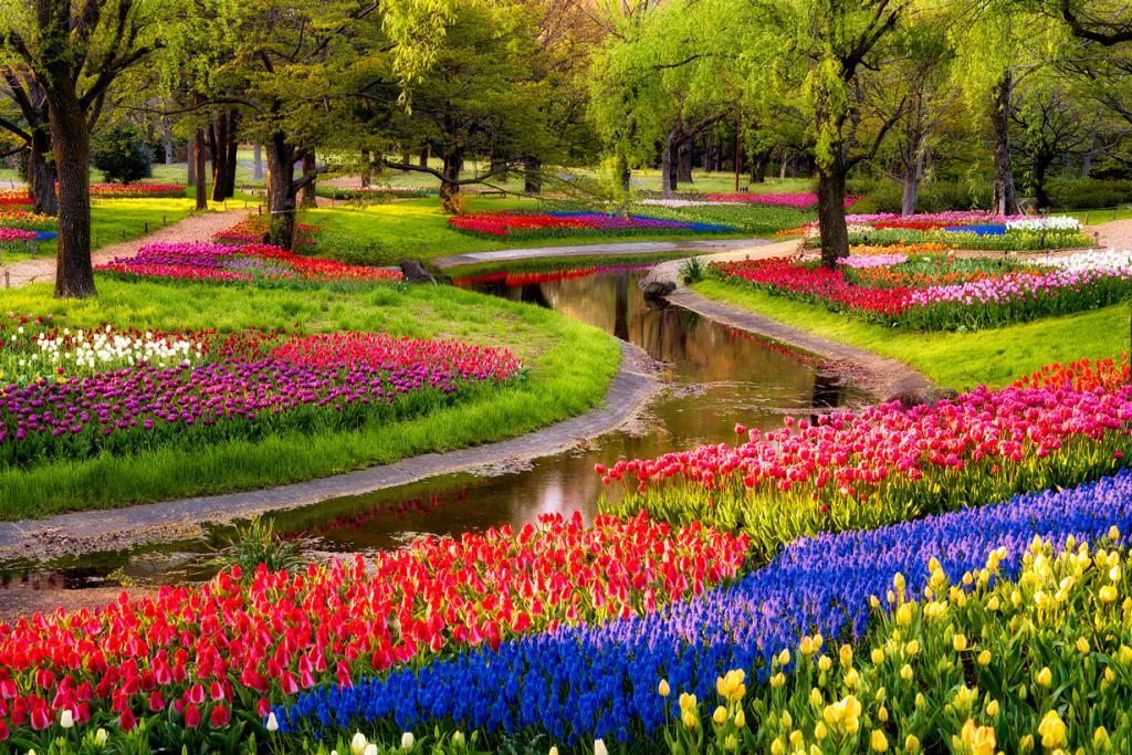 По следам весны. Фотографии, способные передать даже запах