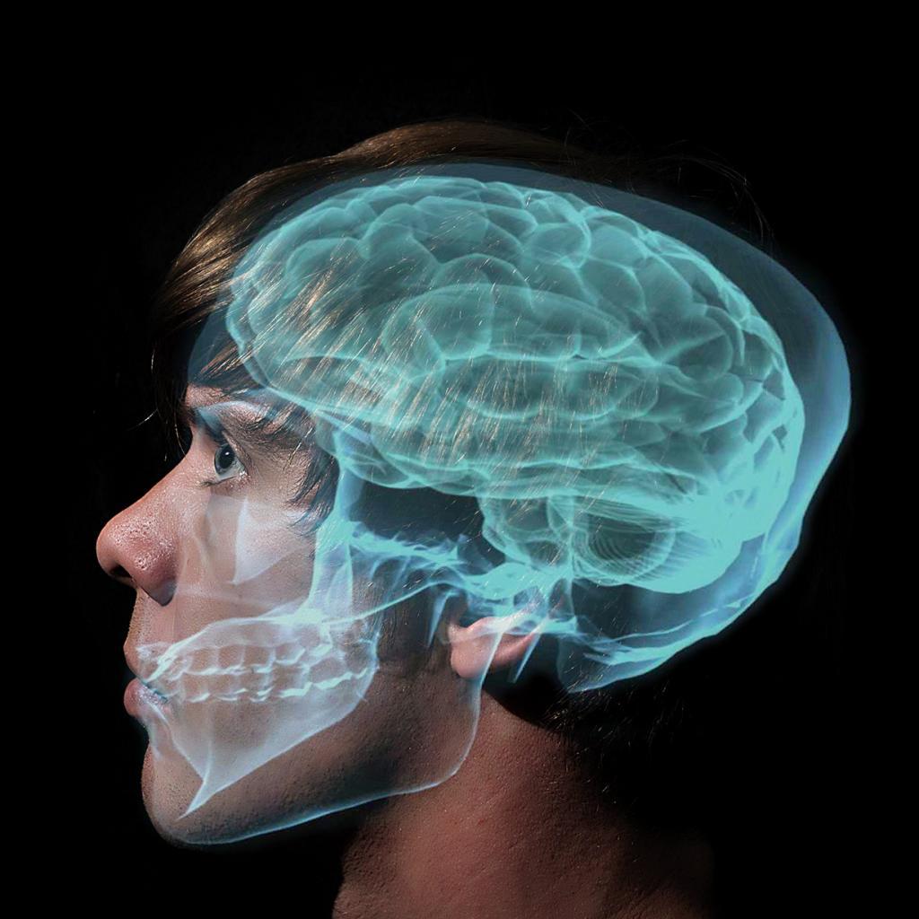 Что происходит у нас в голове? 32 потрясающих факта!
