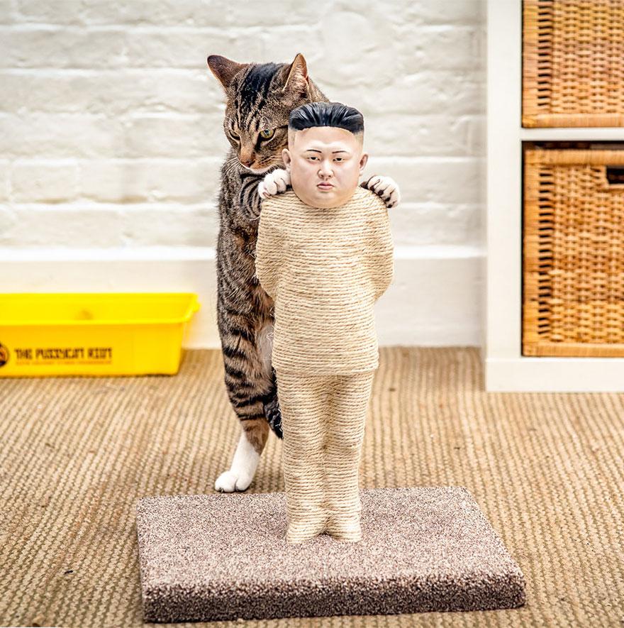 Владимир Путин и Ким Чен Ын «перевоплотились» в развлечение для кошек